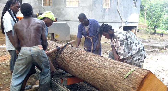 Lumberjacks and joiners process a log in the South Leeward community of Francois. They too contribute to the economy.