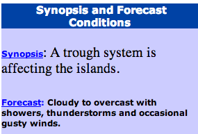 A section of the Government's weather forecast at 6 p.m. on Dec. 24, 2013
