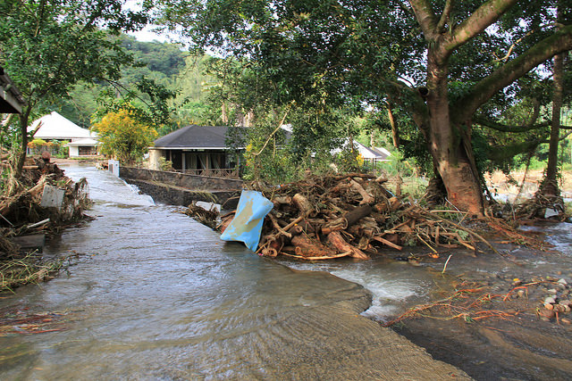 During the Christmas 2013 disaster, flood waters deposited large volumes of neatly cut logs into residential and commercial areas in St. Vincent. (Credit: Kenton X. Chance/IPS)