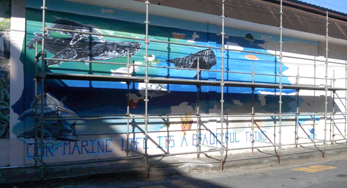 A Mural Celebrating Marine Life Is Installed In Saint Vincent