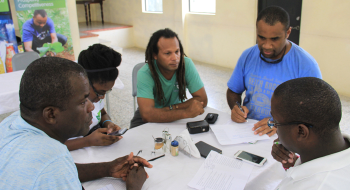 Agriculture stakeholders from the Caribbean and the Pacific discuss lessons learnt about dasheen cultivation in St. Vincent. (IWN photo)