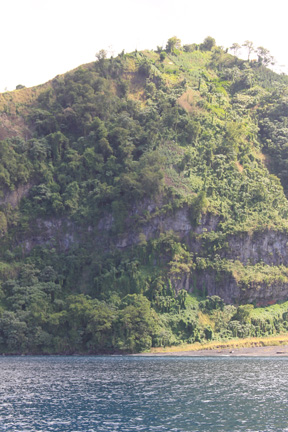 Marijuna being grown on a hillside overlooking the sea in St. Vincent. (IWN photo)