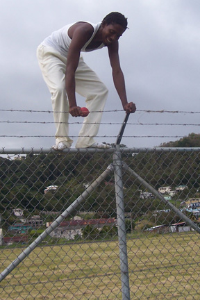 Cato scales new heights with another nine wicket match haul.
