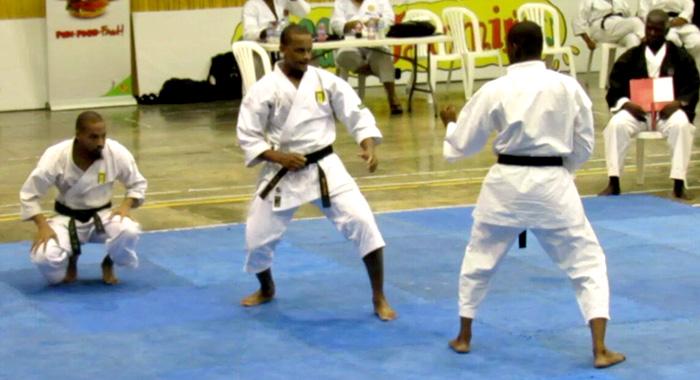 Svg Mens Karate