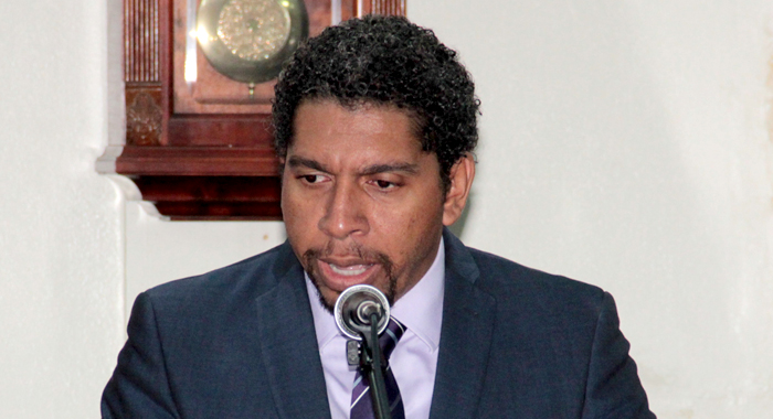 Minister of Information, Camillo Gonsalves speaking in Parliament on Friday. (IWN photo)