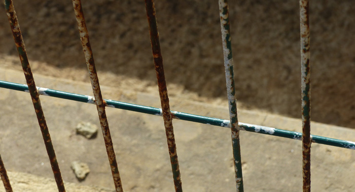 A close-up photograph of the rusting fence. (Photo: Patrick Ferrari)