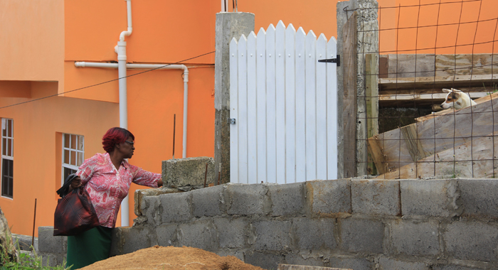 The wall, which has been constructed outside Rosita Browne's house, prevented her from opening her gate. (IWN photo)