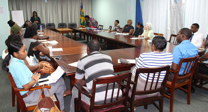 Participants At Last Wednesdays Planning Meeting For Everything Vincy Plus Expo 201