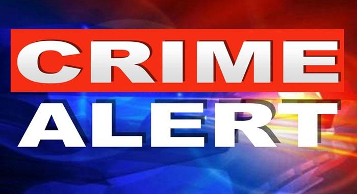 Crime Alert 1